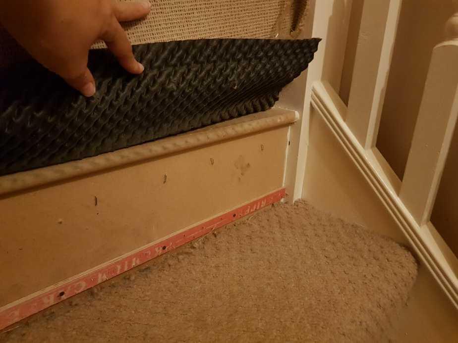 19. Find Hardwood Under Carpet