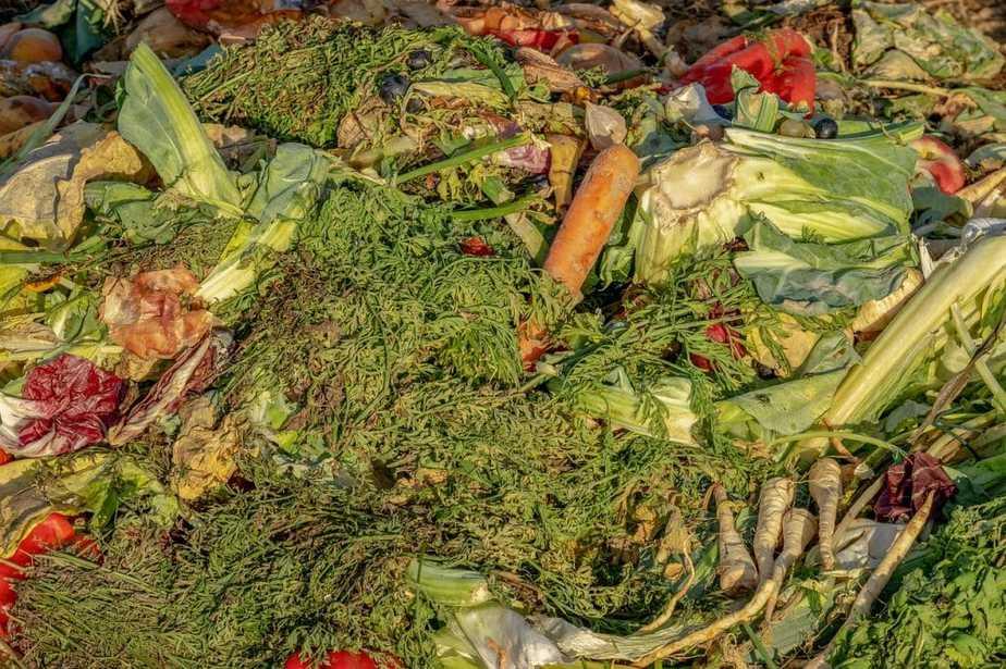 2 Start A Compost Pile