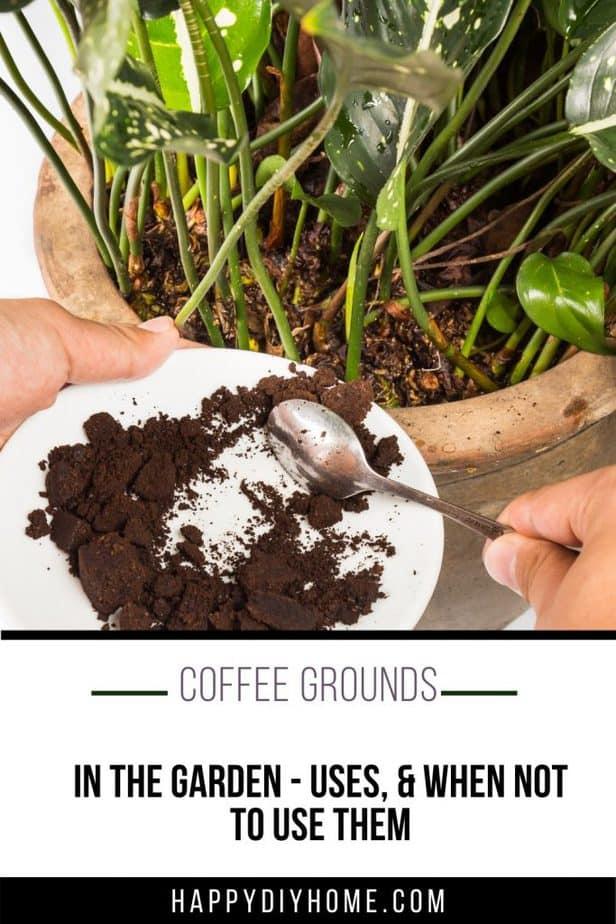 Coffee Grounds 1