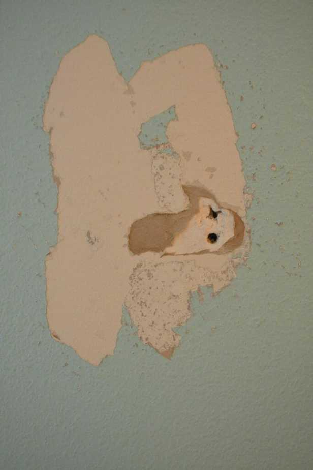 Painting Holes
