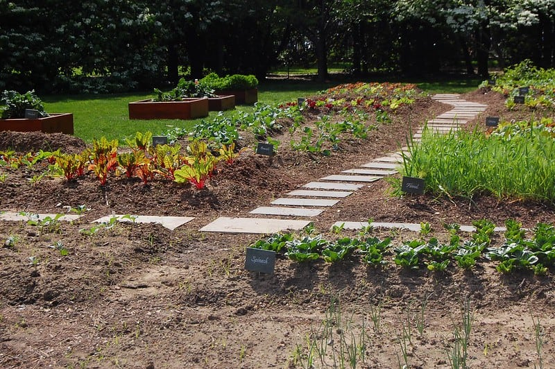4 Fall Garden