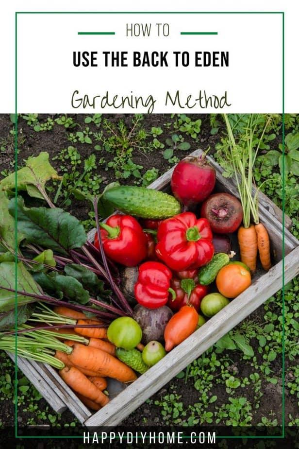 Back to Eden Gardening 2