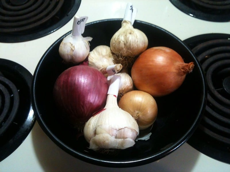 3 Garlic and Onion