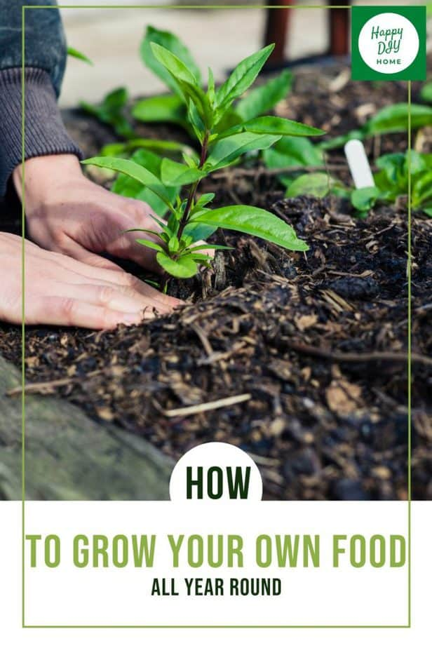 Grow Your Own Food 1