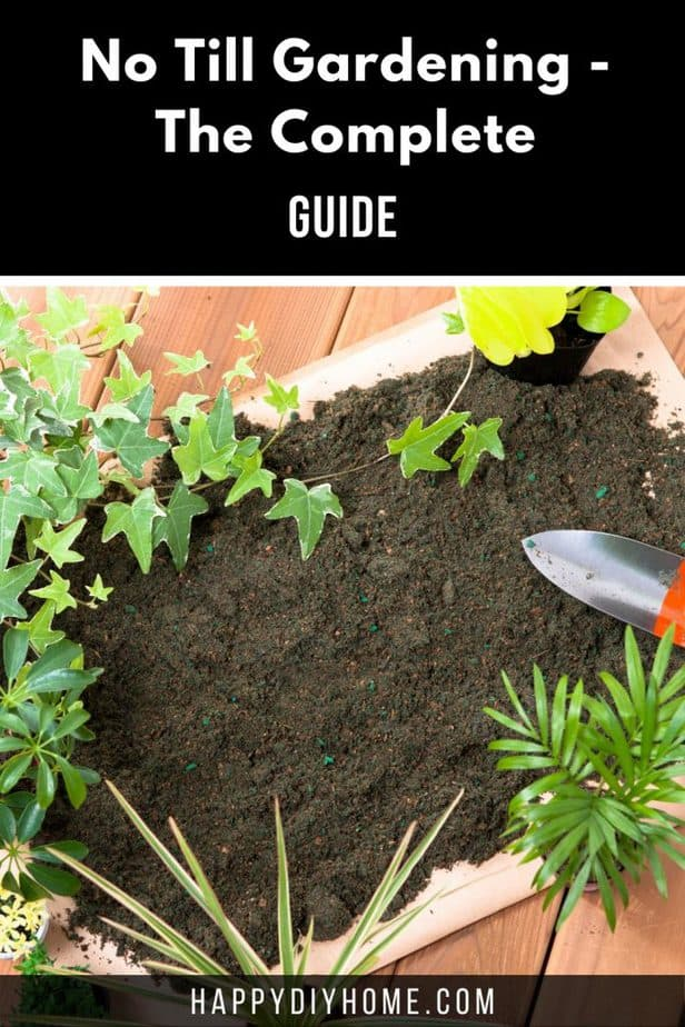 No Till Gardening 2