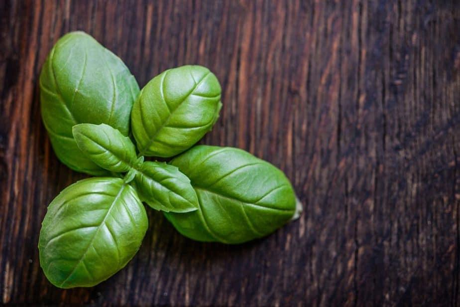 1 Basil Leaves