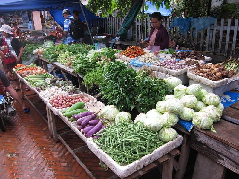1 Vegetable Harvest