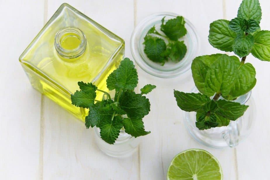 12. Mint Oil