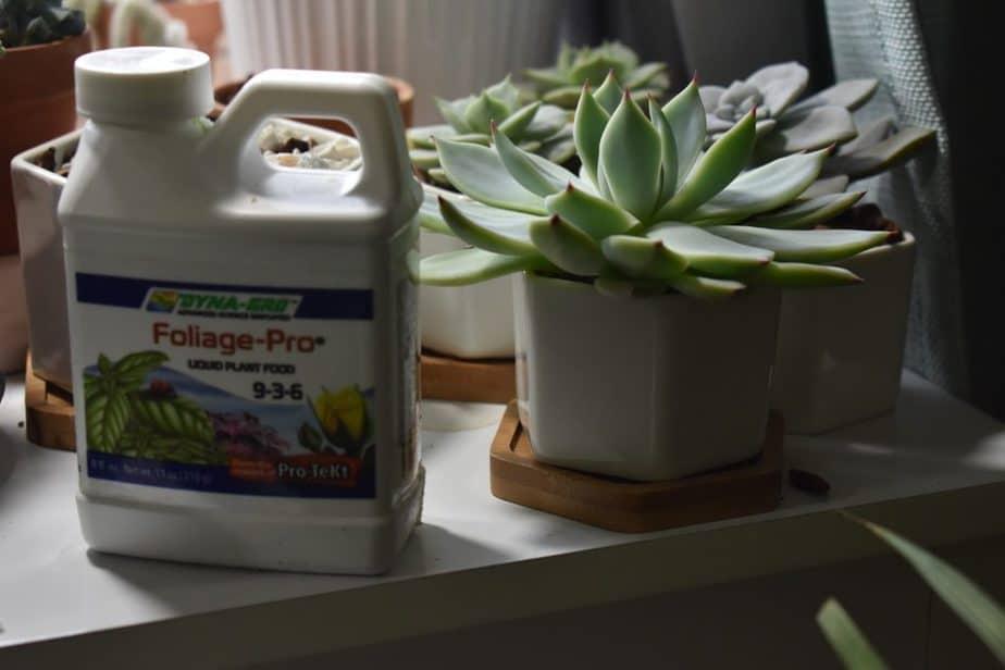 4. Foliage pro