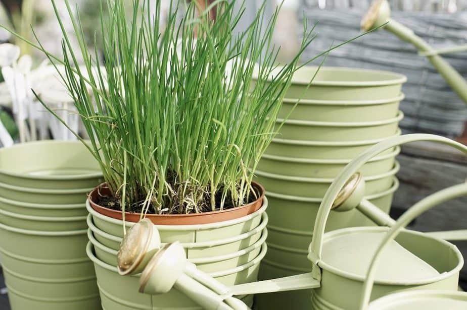 6 Garden Pots