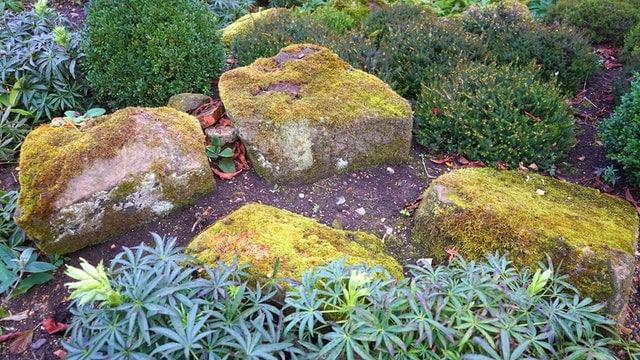 8 Large Rocks
