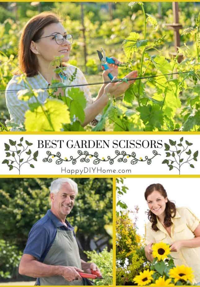 Best Garden Scissors