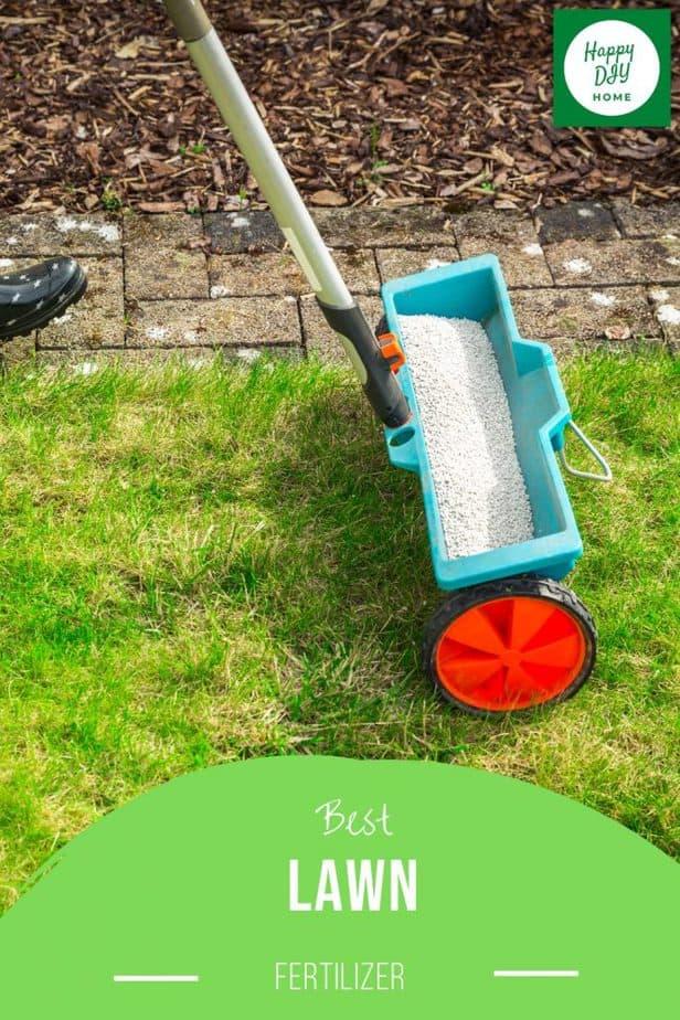 Best Lawn Fertilizer 2