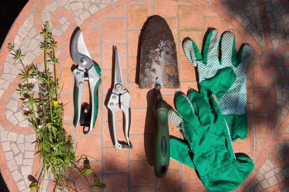 Garden Scissors 1