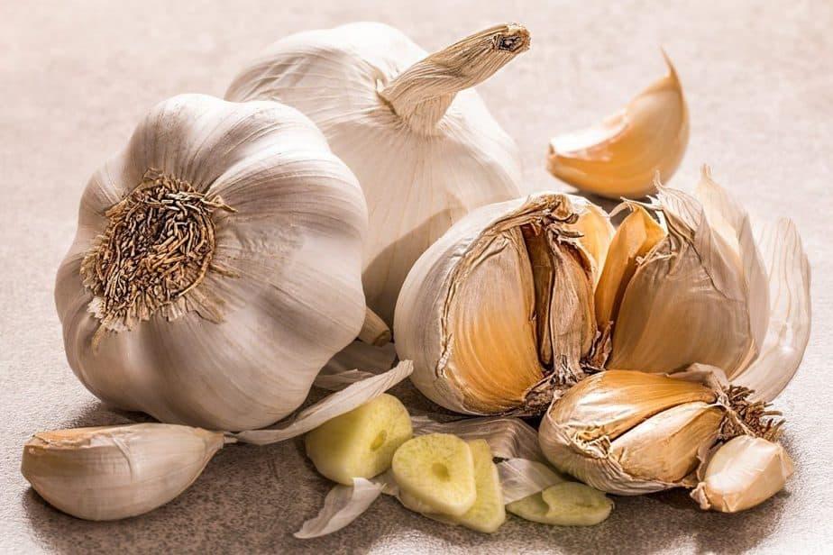 Repel Ticks 4 Garlic