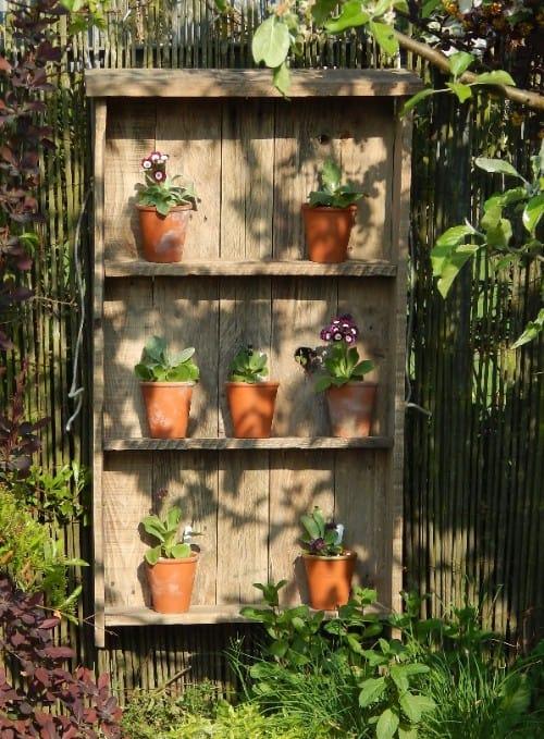 8 plant theatre
