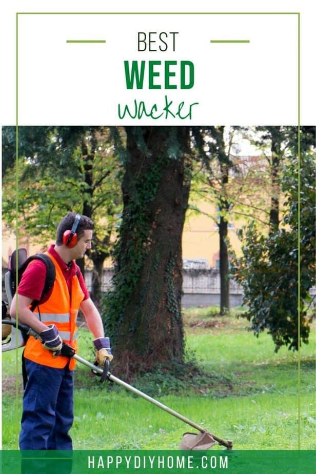 Best Weed Wacker 1