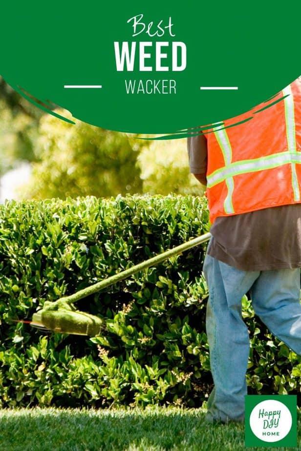 Best Weed Wacker 2