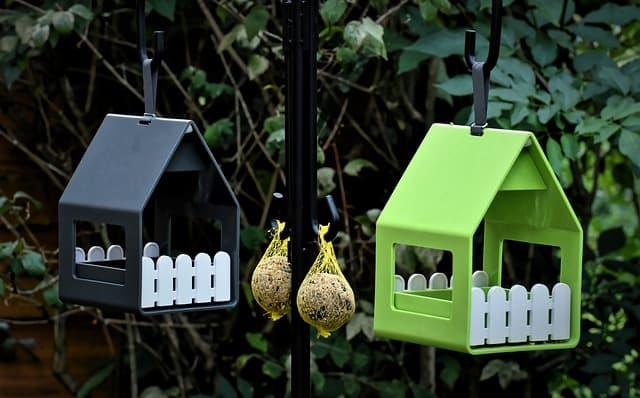 Bird Feeder 1 Start