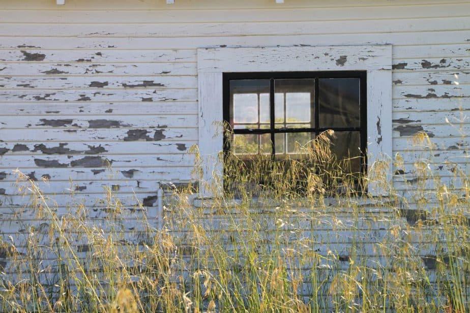Chicken Coop 3 Window
