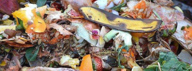 Composting Grinder 1 Start