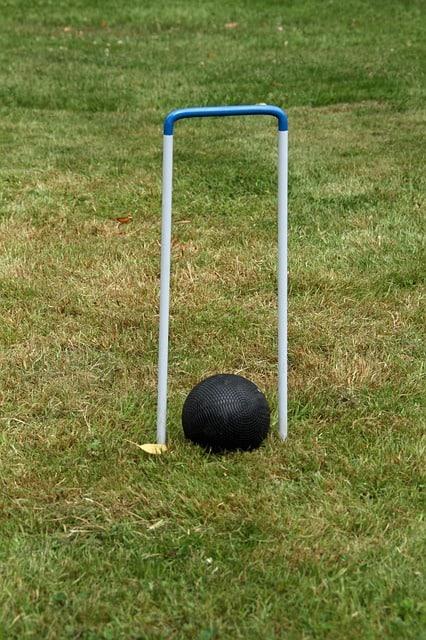 Croquet 5 Wicket