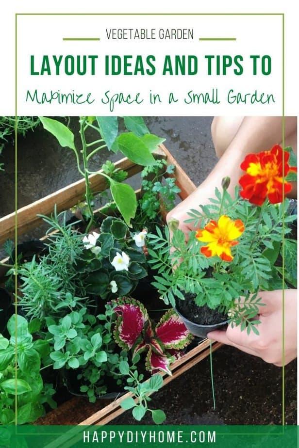 Vegetable Garden Ideas 1