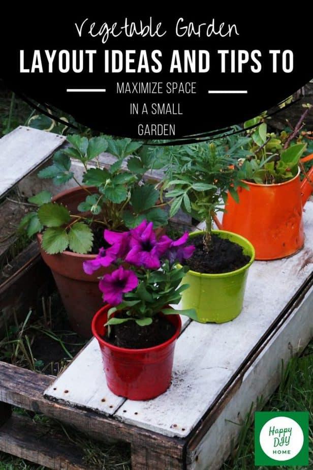 Vegetable Garden Ideas 2
