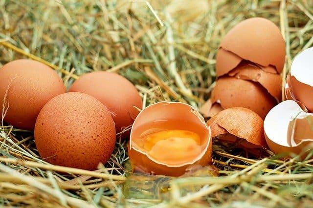 11. Egg Drop