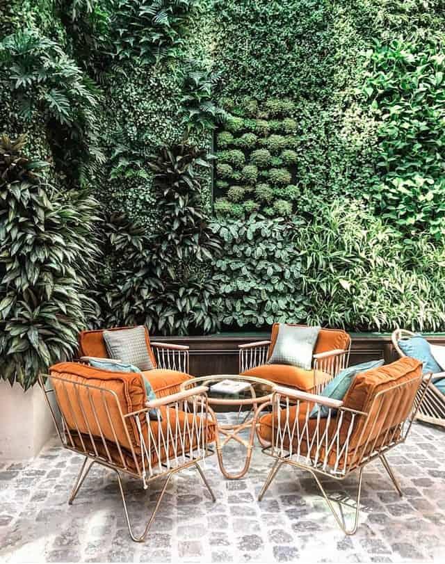 19. Full Plant Wall