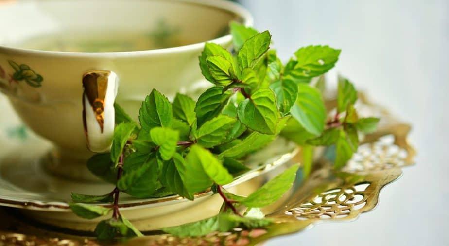 7 Mint Tea