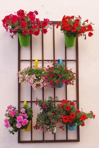 8. Potted Plants