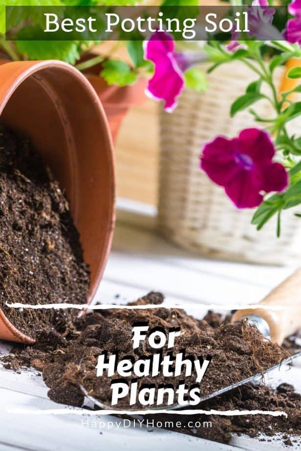 Best Potting Soil 1
