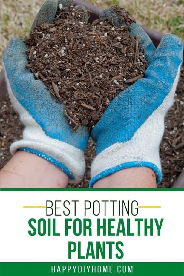 Best Potting Soil 2
