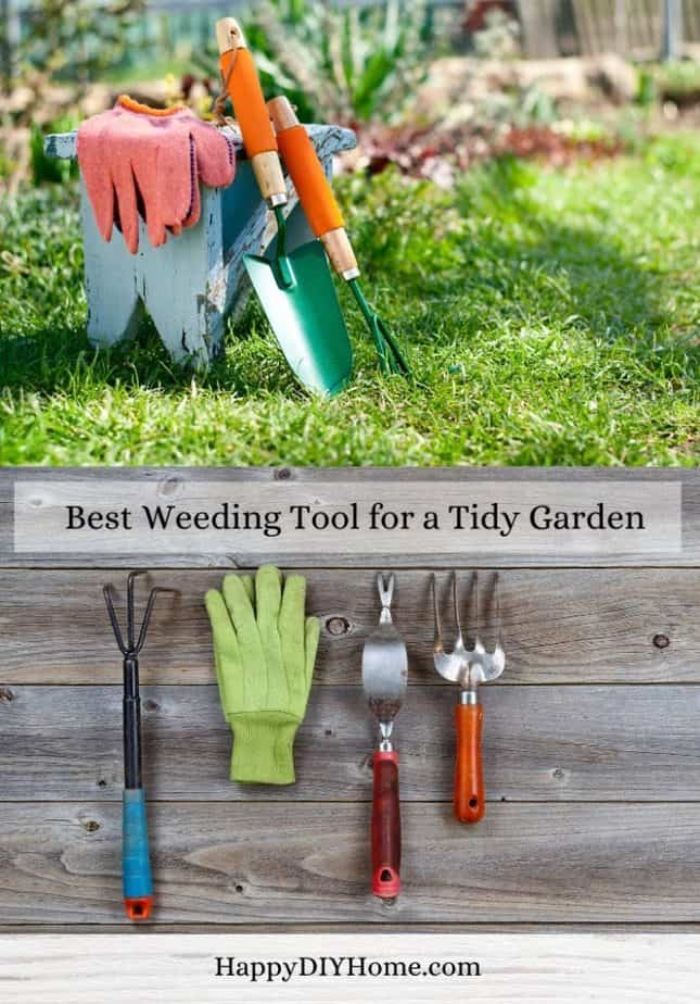 Best Weeding Tool for Tidy Gardens Cover