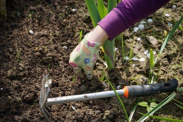 Weeding Tool 2 Function