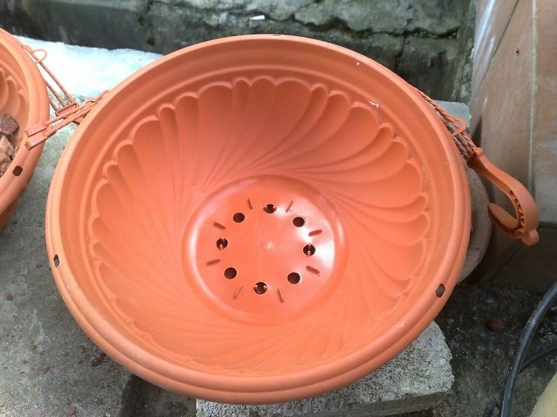 7 drainage holes in pot