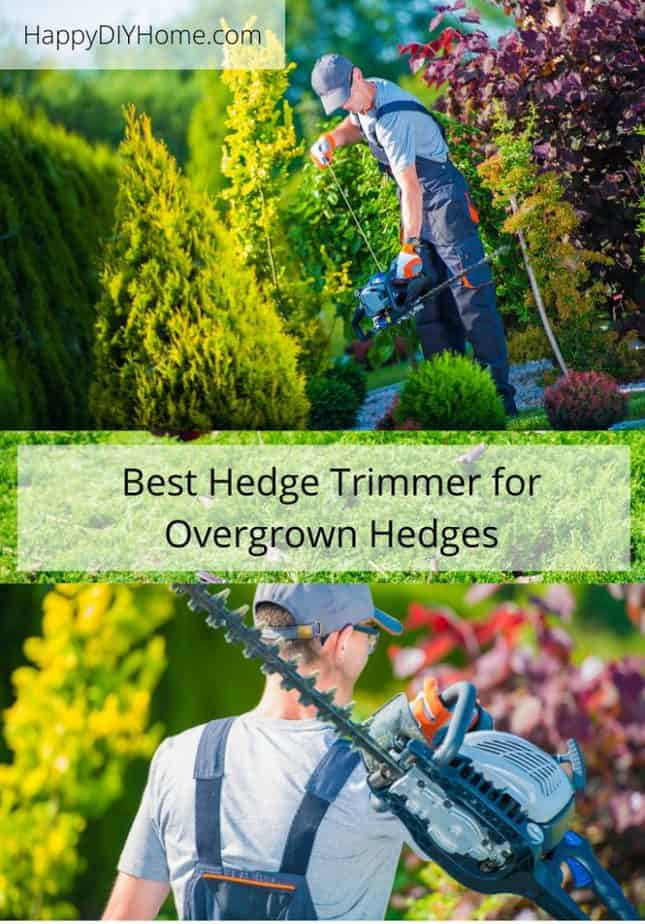 Best Hedge Trimmer for Overgrown Hedges