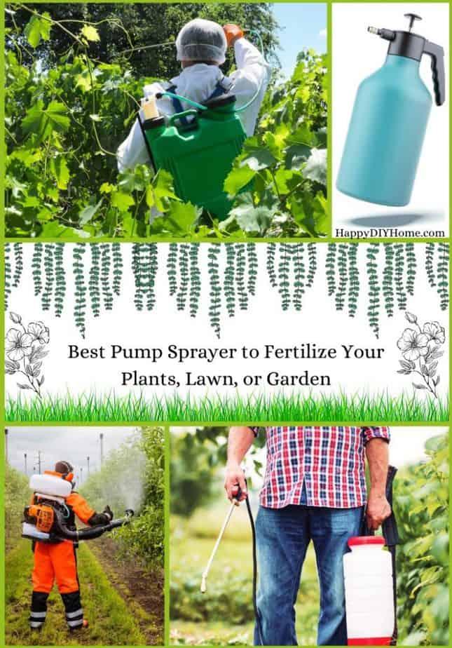 Best Pump Sprayer to Fertilize Your Plants Lawn or Garden