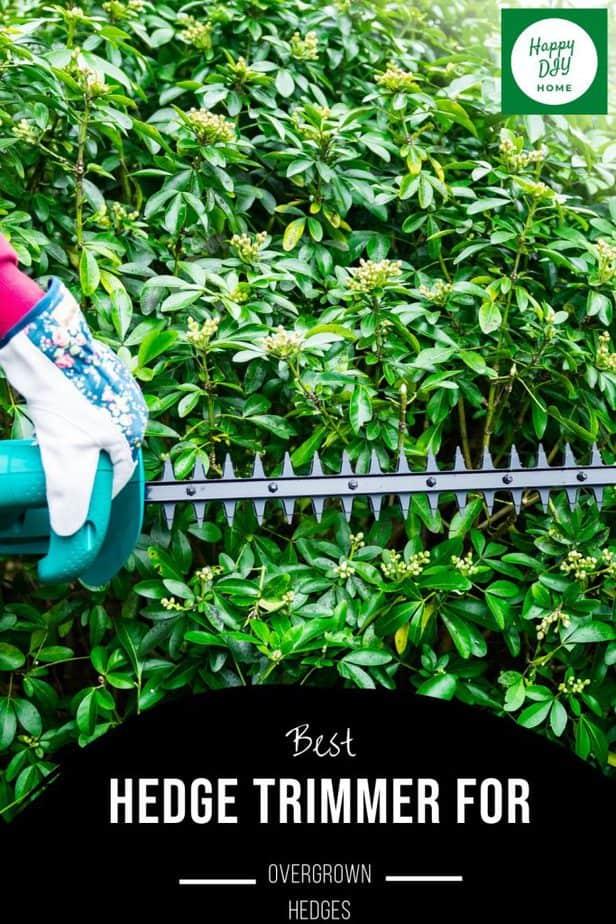 Hedge Trimmer 2