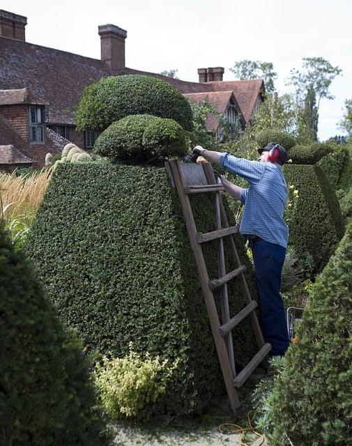 Hedge Trimmer 3 End