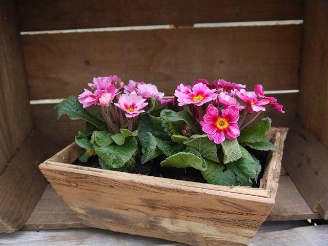 Planter Box 3 Style