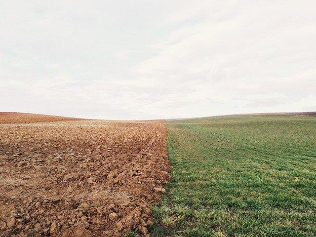 Soil 1 Start