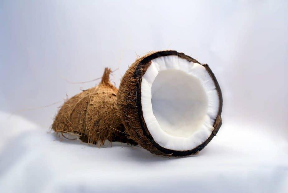 1 Coconut