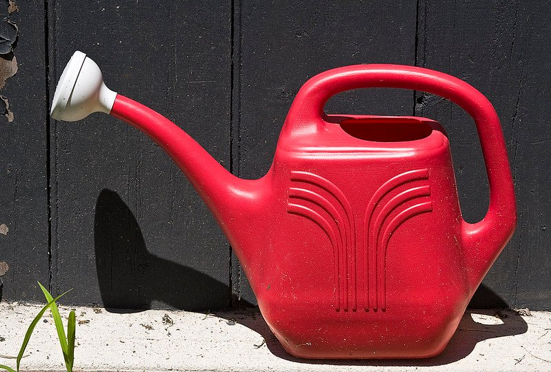 2 Plastic Watering Can