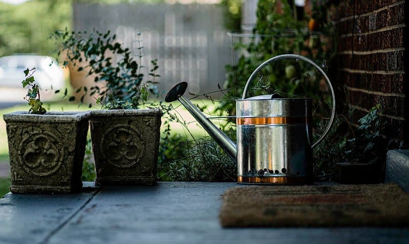 3 Watering Can Buying Guide