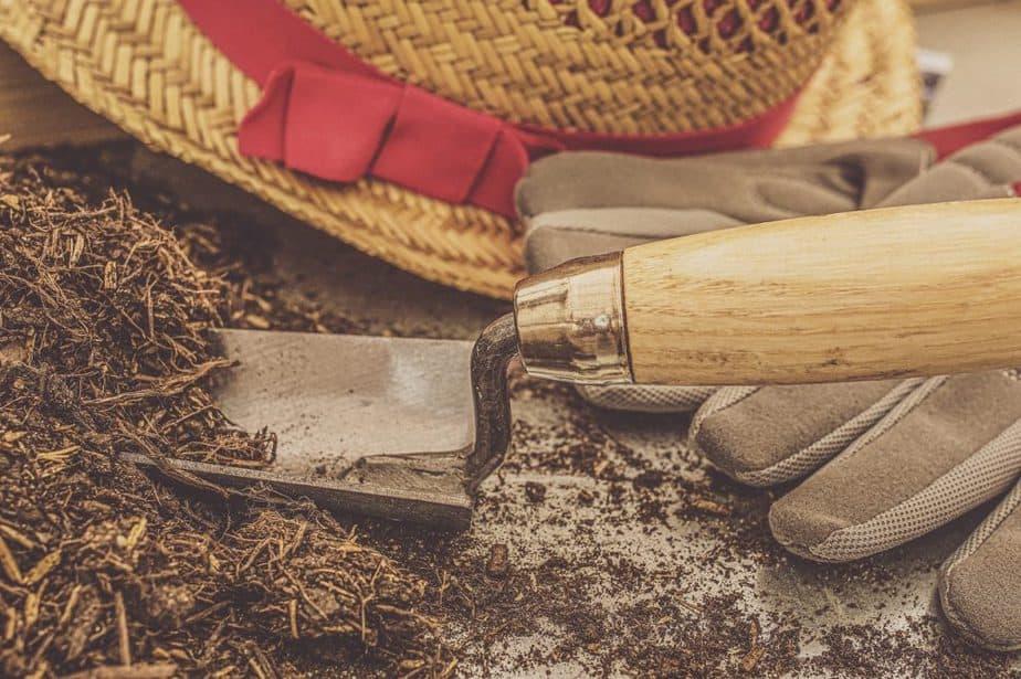 5 Peat Moss Potting Soil