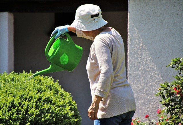 Watering Can 2 Capacity