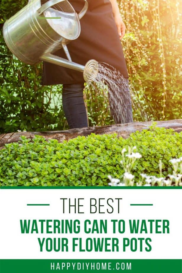 Watering Can Cover 2