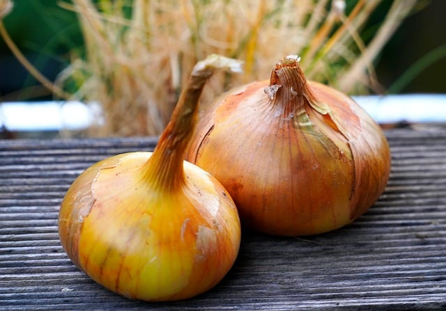 11 Dry Cured Onions